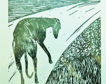BirdsforBirds Greyhound in Spain #2 art block print greyhound