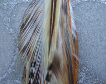 Feather Earring or Feather Hair Extension - Long Cream, White, Tan, and Grizzly Black & White striped Feathers on Silver