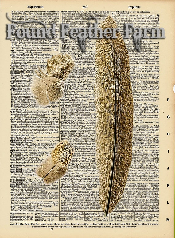 "Vintage Antique Dictionary Page with Antique Print ""Feathers"""