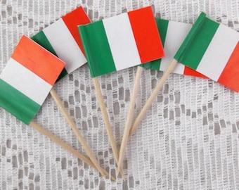 Vintage Italian Flag Picks -  Package of 5