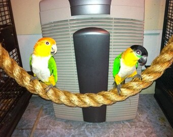 """BEST SELLING! Tiki Rope perches / parrot swings - 4' length x 1.5"""" diameter. Outstanding toys for cockatoos, African Greys, Amazons, conures"""
