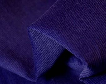 Needle Thin Corduroy Borderline Blue Fabric - 41 Inches Wide