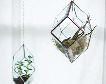 Iridis Prism Terrarium, medium -- for air plant terrarium or small succulent -- stained glass -- terrarium supplies -- eco friendly