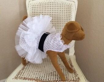 Sweet Elegance Dog Dress