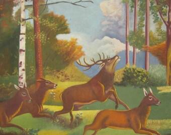 Deer hunting in the German woods