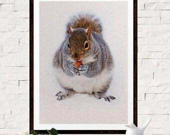 Chipmunk Photo Print - Woodland Animal Art Print - Chipmunk Poster - Digital Chipmunk Art - Animal Photo Art - Minimal Chipmunk Print
