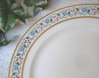 Vintage Limoges CH FIELDS Haviland France Gold Gilt Plate