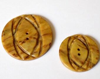 Carved Celluloid Deco Button Set