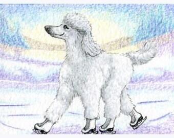 White Poodle ice skating 8x10 art print