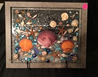 S017 Scallop Shells
