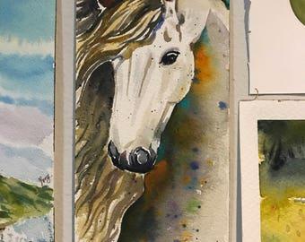 Horse in watercolor