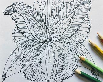 Fantasy Iris, printable colouring page