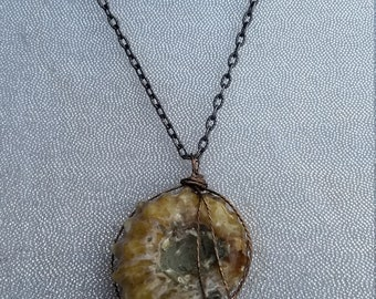 Awesome Ammonite Wire Wrapped Pendant