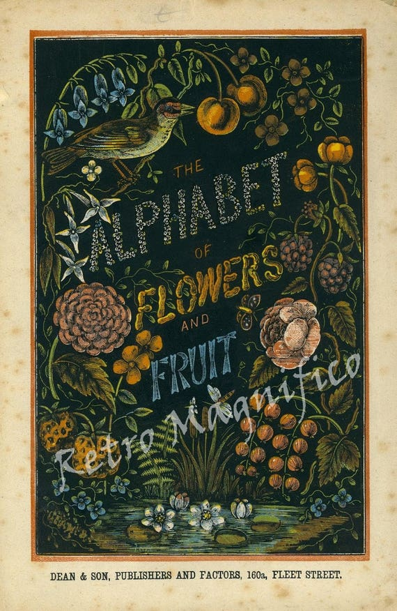 Alphabet of Flowers and Fruit