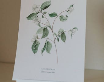 Snowberry branch print