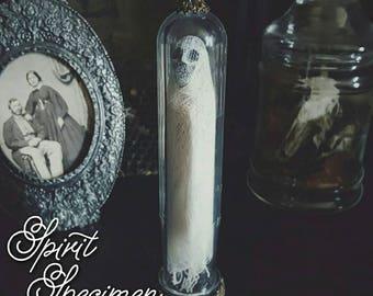 PREORDER Spirit Specimen by Macabre