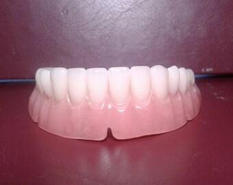 Denture, lower false teeth large