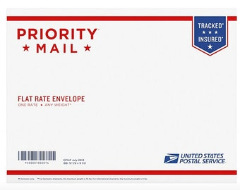 Priority Mail 2-3 day service flat rate envelope