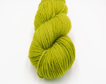 Merino Worsted Hand Dyed Yarn - Sprig
