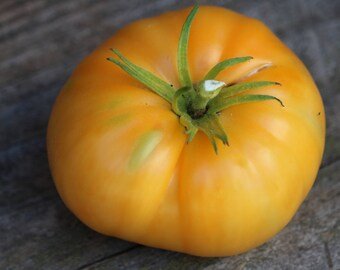 Kellogg's Breakfast tomato seeds, vegetable seeds for tomato lovers