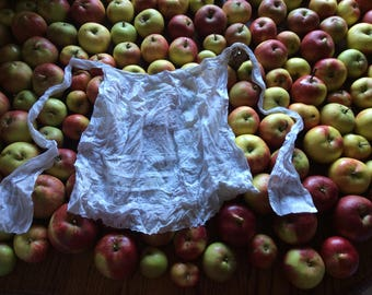 White French maids apron, broiderie anglaise. Delicate, pretty little apron.