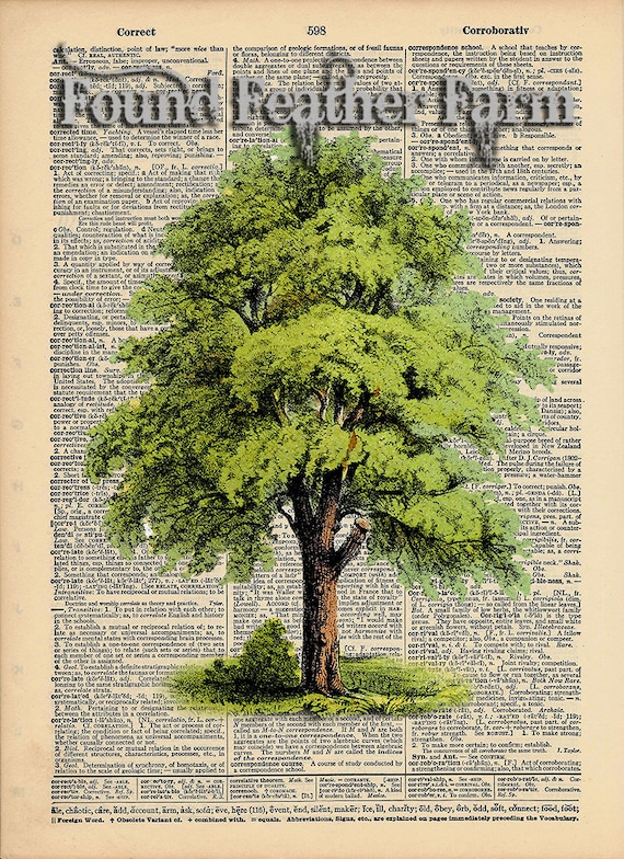 "Vintage Antique Dictionary Page with Antique Print ""The Giant Oak"""