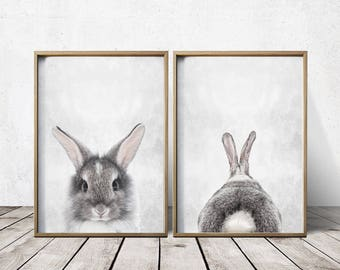 Wall Art Nursery - Bunny Rabbit Print - Bunny Rabbit Wall Art - Bunny Rabbit Poster - Bunny Rabbit Art - Bunny Rabbit Poster - Animal Prints