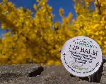 Lip Balm Menthol Chocolate, Handmade Lip Balm, Natural Lip Balm, Soothing Lip Balm, Lip Butter, Lip Moiturizer, by KsenaLand