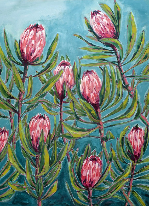 Pink Protea Painting Archival Wall Art Print Illustration Australian Native art prints