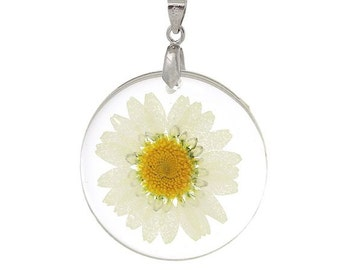 1 Daisy Flower Pendant Real Flowers Round Charm 44mm Jewelry Making Supplies - 22R