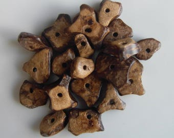 Set of 20 small brown coconut chips