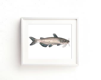 Channel Catfish Watercolor Fine Art Print