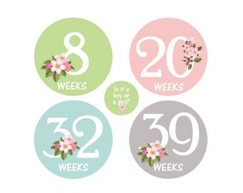 Weekly belly bump stickers, maternity stickers, pregnancy announcement, pregnancy reveal, pregnancy milestone stickers, belly growth sticker