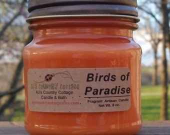 BIRDS of PARADISE CANDLE - Fruit Candles, Scented Candles, Floral Candles, Strawberry, Vanilla, Coconut, Pomegranate, Jasmine, Rose