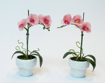 1/12 scale Miniature Phalaenopsis, butterfly orchid for dollhouse