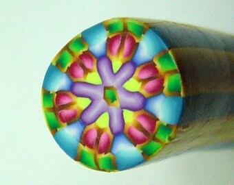 Raw Polymer Clay Kaleidoscope Round Cane Raw Unbaked Colorful