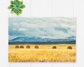 "landscape wall art, landscape photography, photograph with mat, landscape wall art, landscape art prints, fall decor - ""Clash of Seasons"""