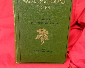 Wayside and Woodland trees by Edward Step. 1940s book of trees