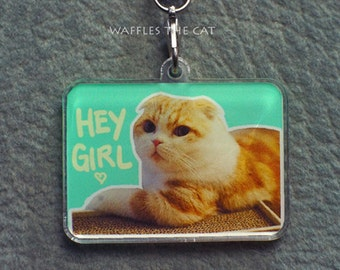 Hey Girl: Funny Cat Keychain Acrylic  1.5 inch Cute Kitty Charm Waffles the Cat