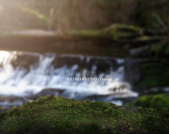 Forest moss digital background with waterfall