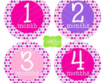 Polka Dot Baby Monthly Stickers - Baby Bodysuit Stickers - Monthly Baby Stickers - Girl Monthly Stickers - Pink and Purple - 042
