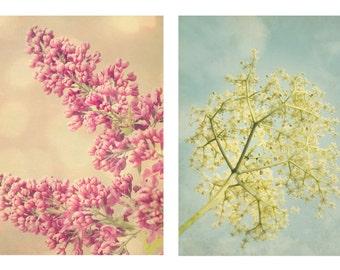 TWO Pastel Botanical Photographs, Pair of Flower Photos, Instant Download, Digital File, Printable Art, No.10 & 11