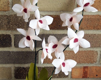 Moth Orchid-Paper flowers
