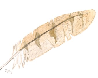 Native American Inspired Art, watercolor print, fine art print, giclee archival print, owl feather 'Barn Owl feather'