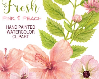 watercolor flowers clipart pink and peach hibiscus flowers, bridal florals watercolor wedding graphics,  hand painted watercolor graphics