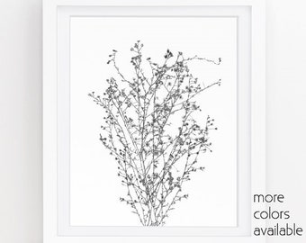 Minimalist art, Black and white photography, Modern art prints, Floral wall art, Nature prints, Printable wall art, 5x7, 8x10 & 11x14, 242