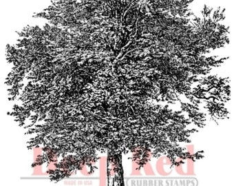 Deep Red Rubber Stamp Old Oak Tree