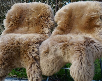 Two XL large approx. 120 x 70 cm and high-finished sheepskins-lambskins in gold beige