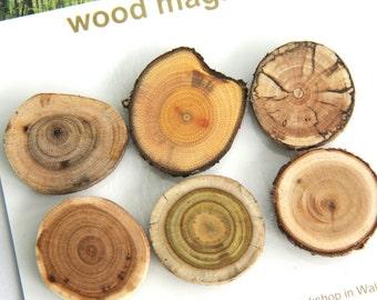 6 wood magnets - light spalt - butternut buckthorn spalted maple cherry sumac cedar - dark set