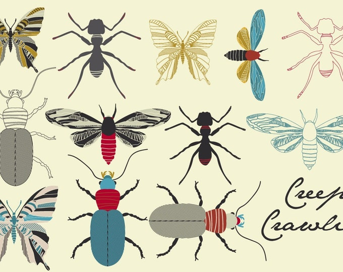 Butterfly Clipart, Beetle Clipart